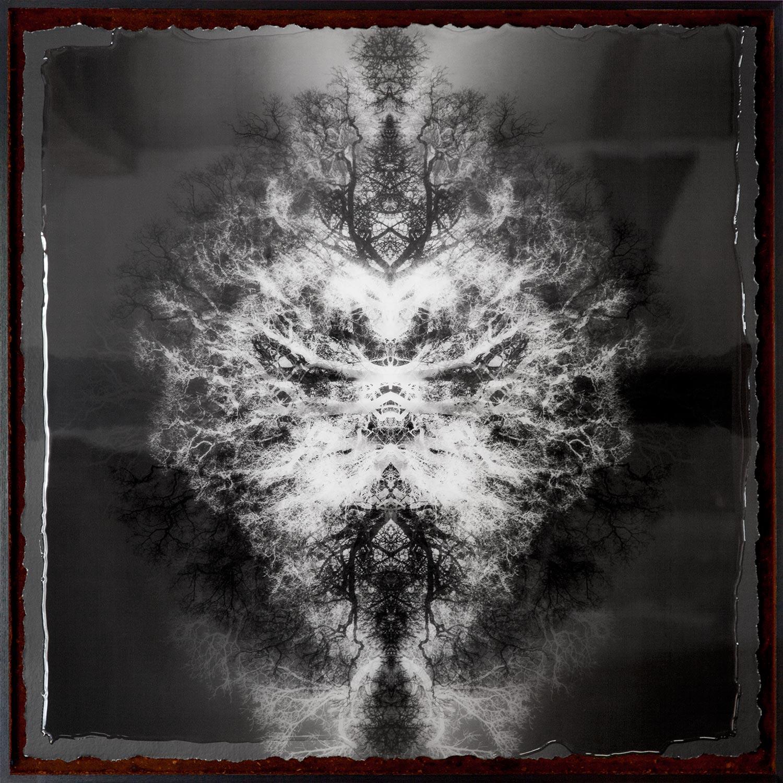 Symmetree Euclid's Dream<br/> Framed in Resin 75x75 cm - SOLD