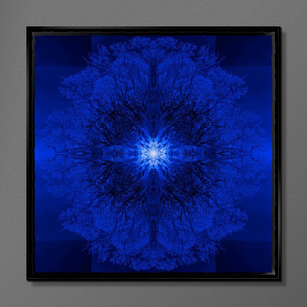 Symmetree - Tripomatic Klein