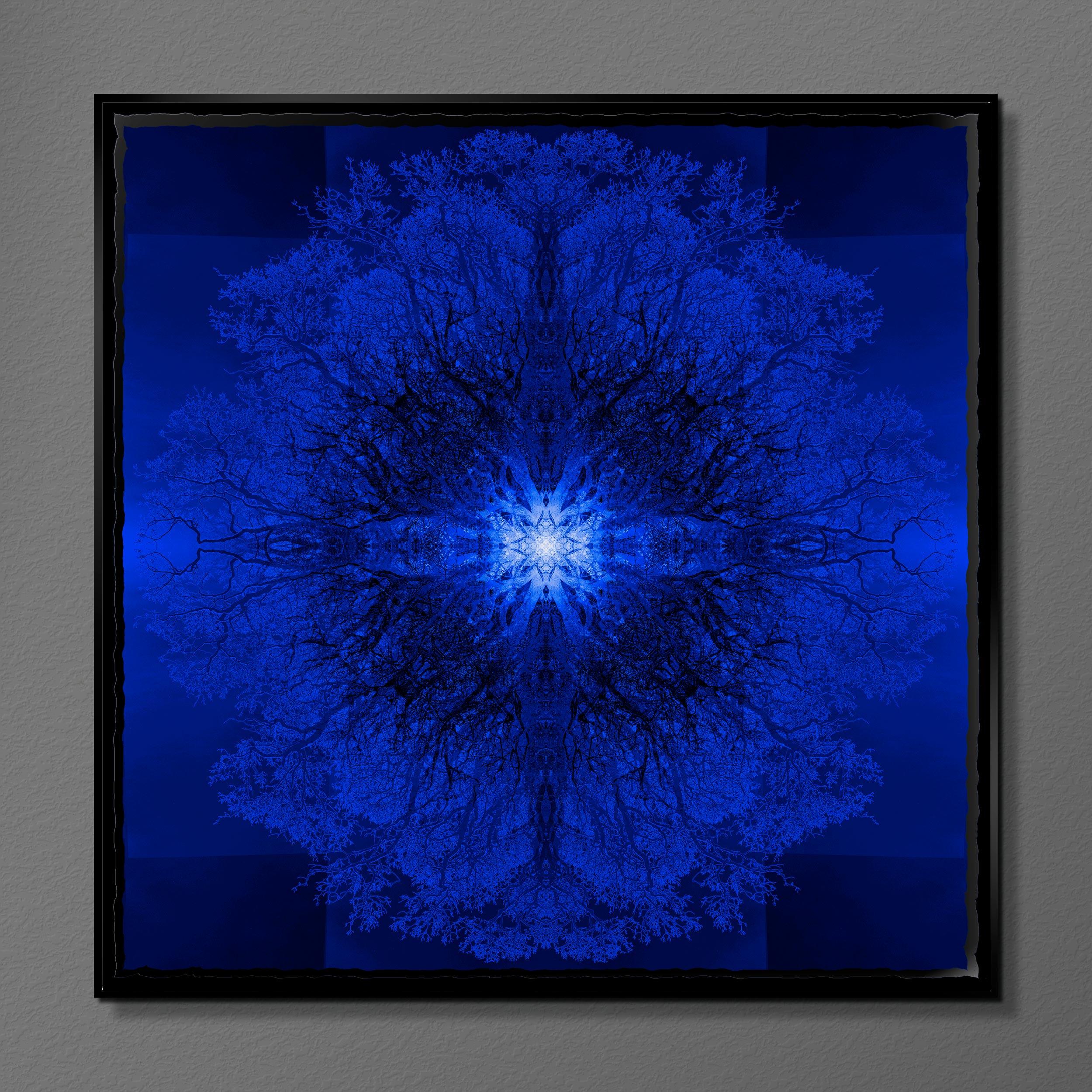 Symmetree - Tripomatic Klein<br/> Framed in Resin 75x75 cm