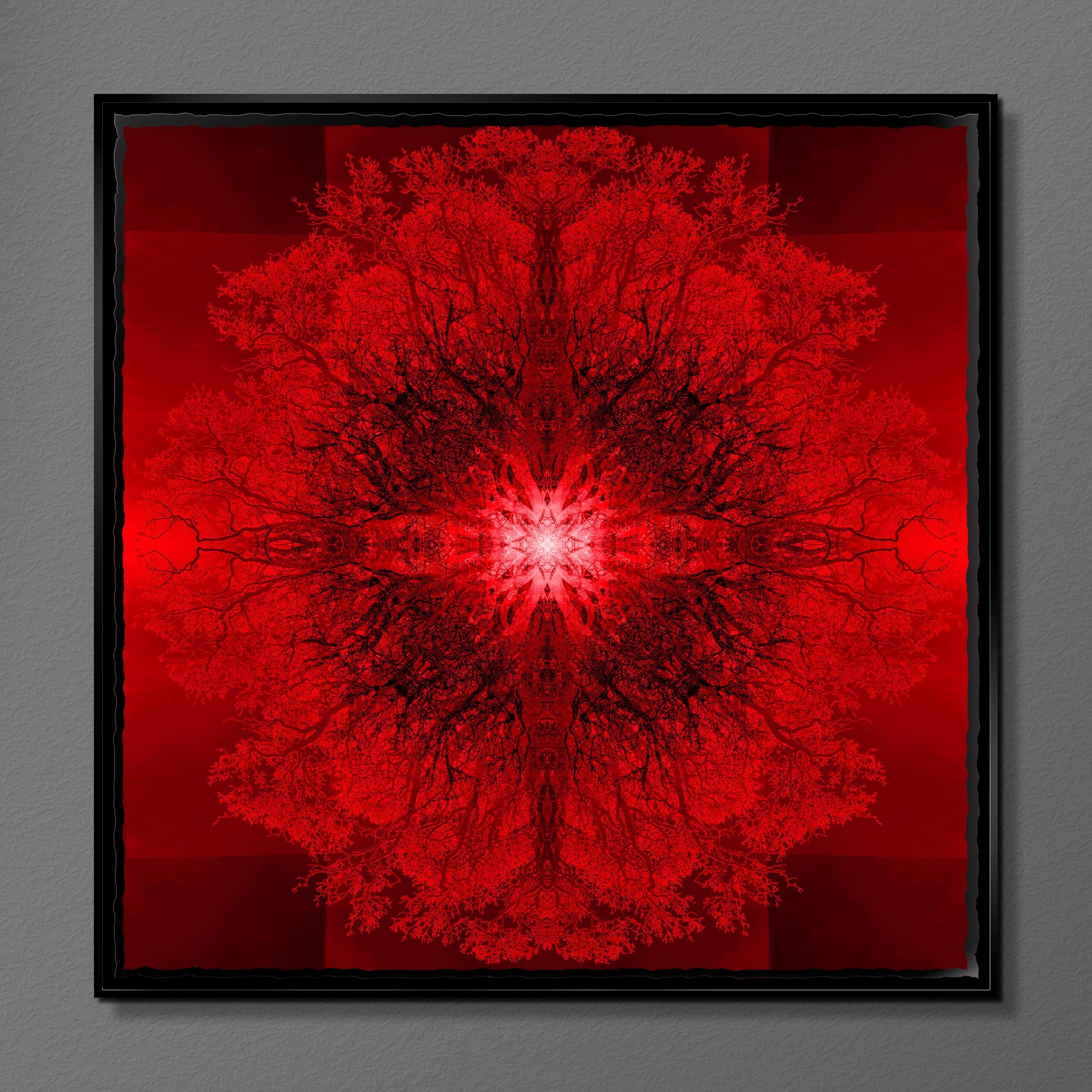 Symmetree - Tripomatic Rothko<br/> Framed in Resin 75x75 cm