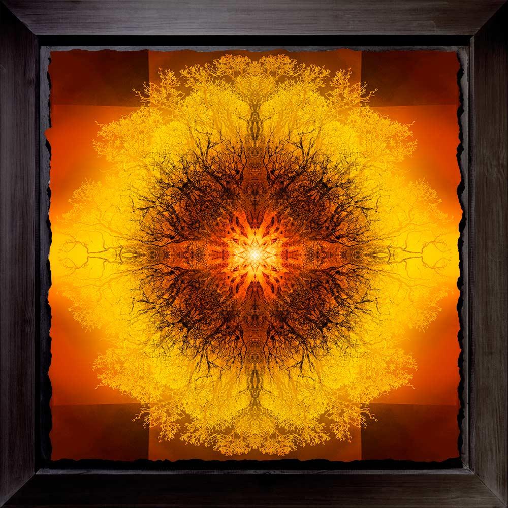 Symmetree Tripomatic Turner<br/> Framed in Resin 90x90 cm