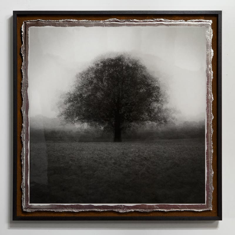 All For One <br/>