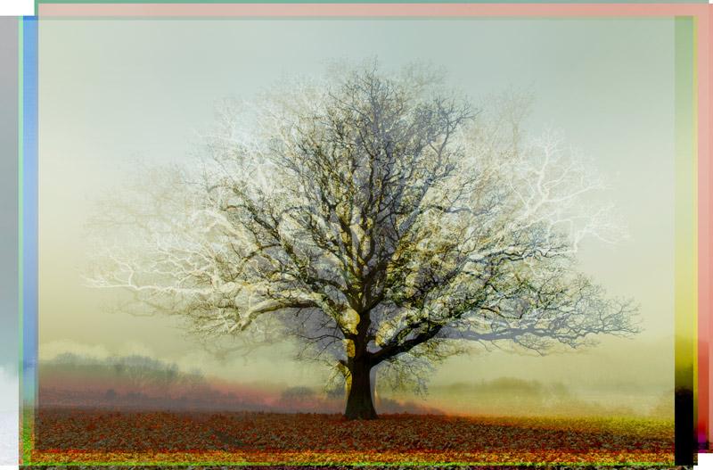 Patina Warm Mist