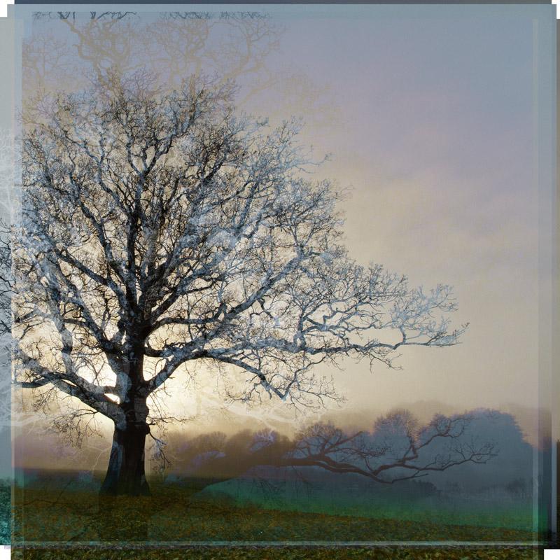 Rising Sun in Warm Grey