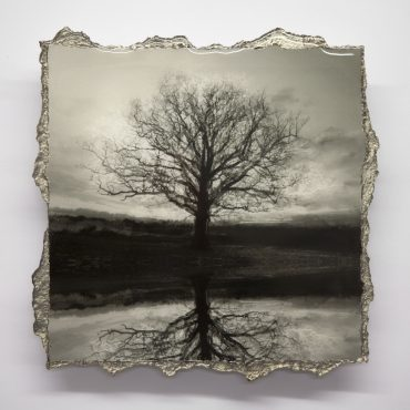 SYMMETREE REFLECTED – SOLD – MORE AVAILABLE