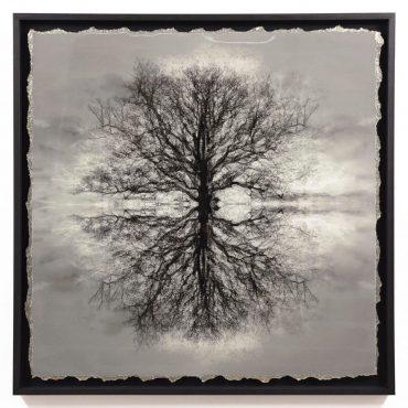 Safe Arbor XII – Sold